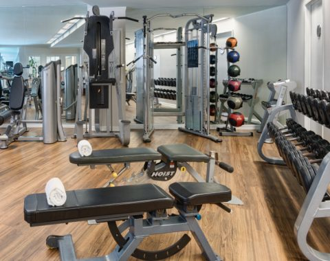 View of the fitness center at the Windsor Court Hotel, featuring benches, dumbbells, and other fitness equipment