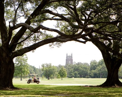 man driving golf cart in Audubon Park in New Orleans